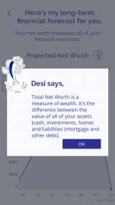 Projected Net Worth Desi